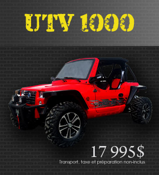 Models UTV1000cc